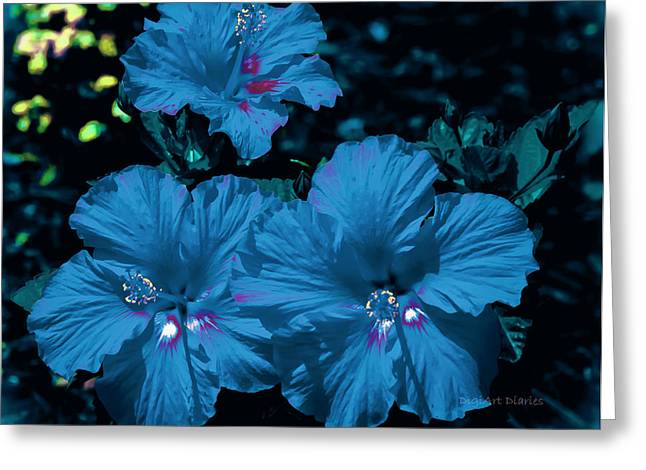 Turquois Greeting Cards - Turquois Trio Greeting Card by DigiArt Diaries by Vicky B Fuller