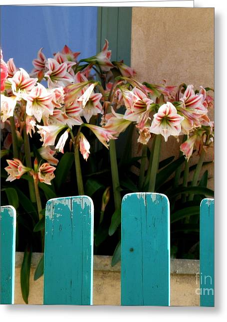 Lainie Wrightson Greeting Cards - Turquoise Garden Gate Greeting Card by Lainie Wrightson