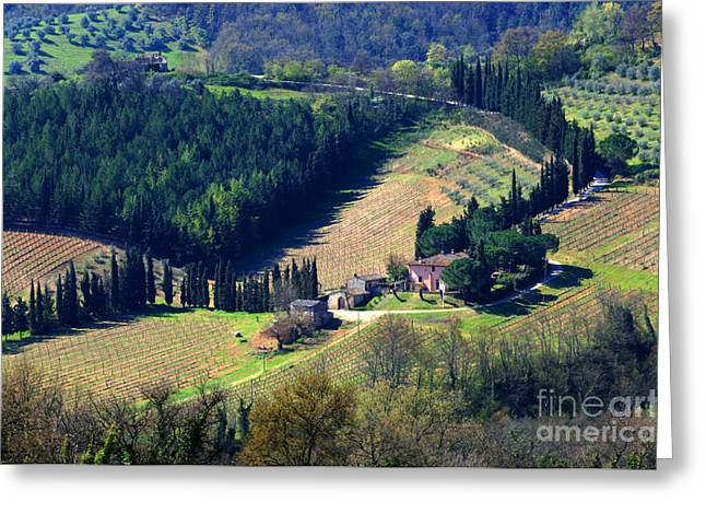Landscapes Of Tuscany Greeting Cards - Tuscany Countryside 6 Greeting Card by Bob Christopher