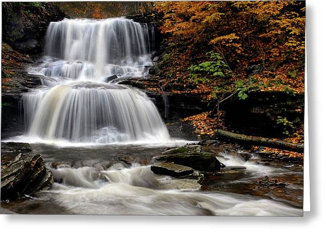 Tuscarora Greeting Cards - Tuscarora Falls Rickets Glen Penn Greeting Card by Dave Mills