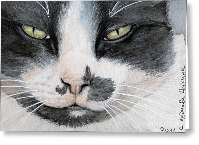 Tuxedo Cat Greeting Card by Svetlana Ledneva-Schukina