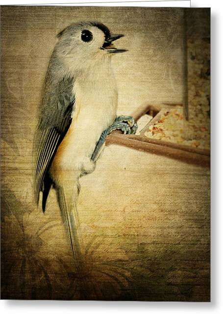 Bird-feeder Greeting Cards - Tweet Tweet Greeting Card by Kathy Jennings