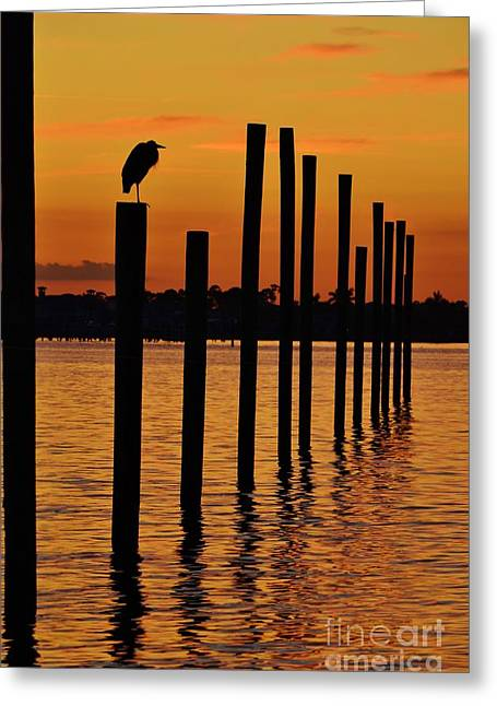 St. Lucie River Greeting Cards - Twelve Poles at Sunset Greeting Card by Lynda Dawson-Youngclaus