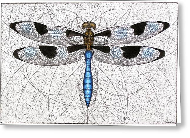 Invertebrates Mixed Media Greeting Cards - Twelve Spotted Skimmer Greeting Card by Charles Harden