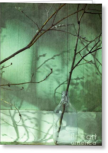 Jugs Photographs Greeting Cards - Twigs Shadows And An Empty Beer Jug Greeting Card by Priska Wettstein