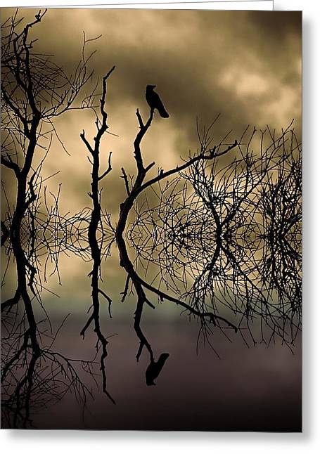 Birds In A Nest Greeting Cards - Twilight Greeting Card by Sharon Lisa Clarke