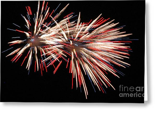 Twin Burst Greeting Card by Norman  Andrus