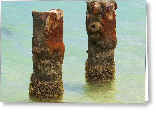 Reddish Flaking Iron Oxide Greeting Cards - Twin Rusted Dock Piers of the Caribbean II Greeting Card by David Letts