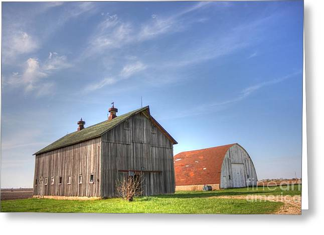 Illinois Barns Photographs Greeting Cards - Twins Greeting Card by David Bearden