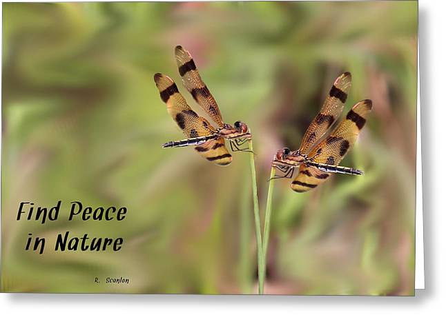 Amberwing Greeting Cards - Twins Greeting Card by Rosalie Scanlon