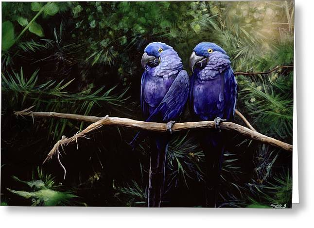 Macaw Art Greeting Cards - Twins Greeting Card by Steve Goad