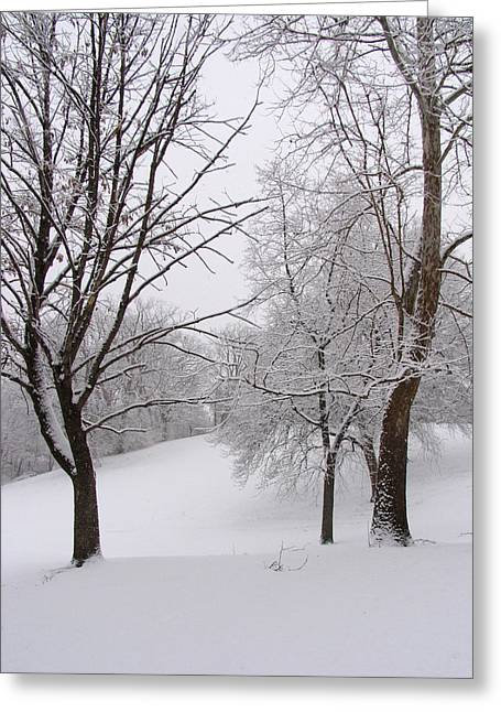Adam Long Greeting Cards - Twins trees in the Snow Greeting Card by Adam Long