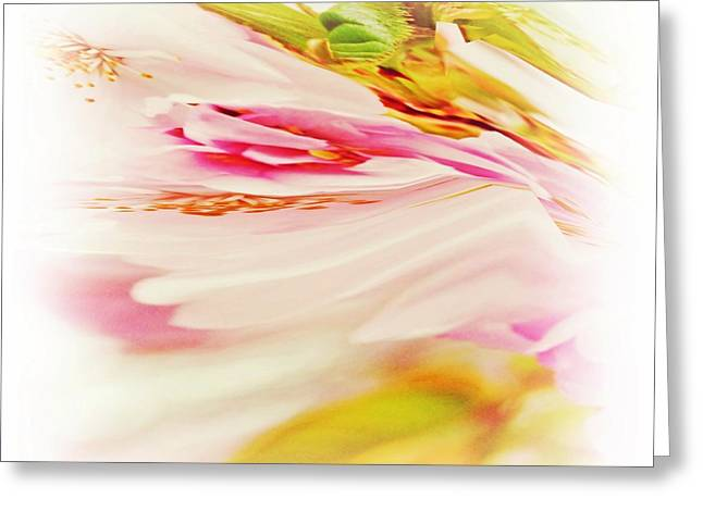Pink Flower Prints Greeting Cards - Twisted Blossoms  Greeting Card by Sharon Lisa Clarke