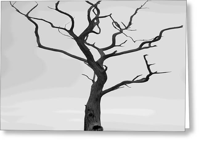 Fine Digital Art Greeting Cards - Twisted Greeting Card by Mike McGlothlen