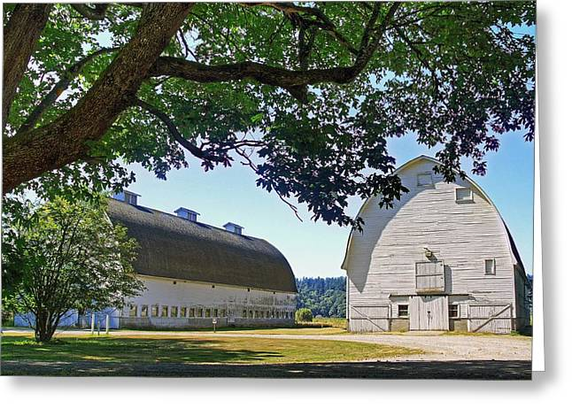 Photoshop Elements 7 Greeting Cards - Two Barns Greeting Card by Chris Anderson