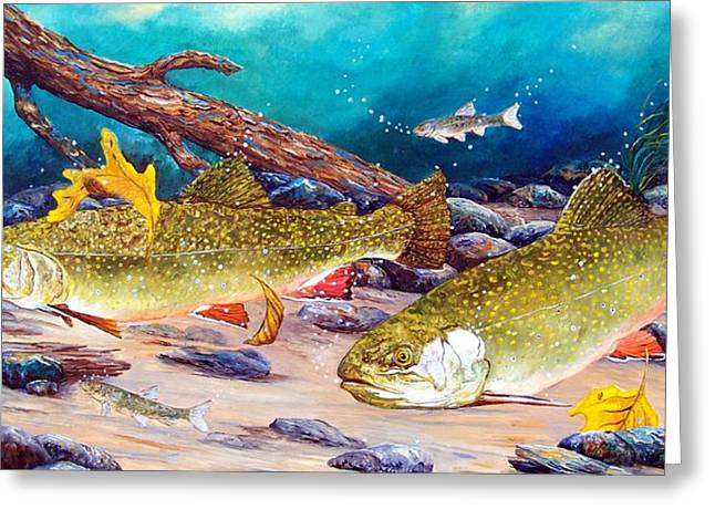 Trout Greeting Card Greeting Cards - Two Brook Trout Greeting Card by Patti Gilley