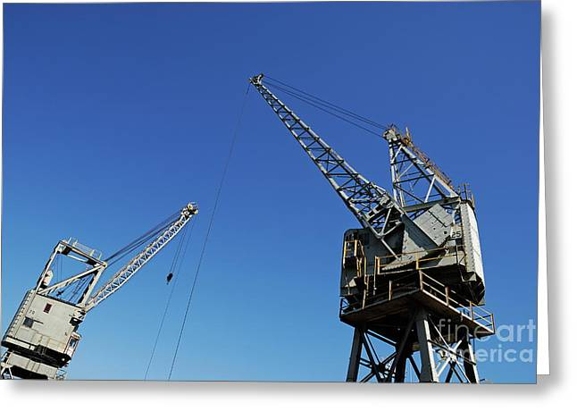 Cape Town Greeting Cards - Two cranes at harbor Greeting Card by Sami Sarkis