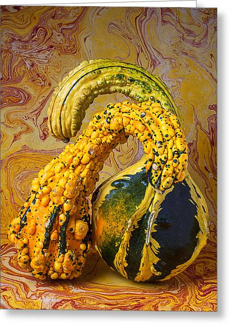 Two Gourds Greeting Card by Garry Gay