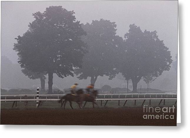 Race Horse Greeting Cards - Two Horses Three Trees Greeting Card by Marc Bittan