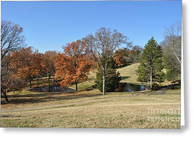 Best Sellers -  - Cheekwood Greeting Cards - Two Lakes Greeting Card by Denise Ellis