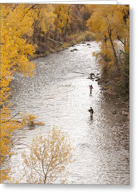Aspens In Fall Greeting Cards - Two Men Flyfishing On The Aspen-lined Greeting Card by Pete Mcbride