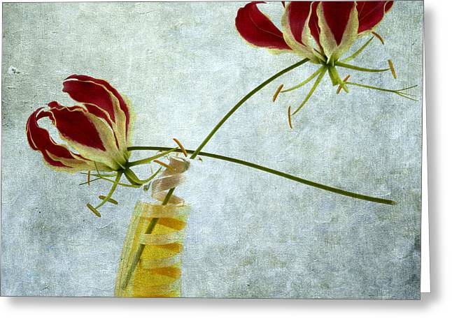 Botany Greeting Cards - Two Gloriosa Lily. Greeting Card by Bernard Jaubert