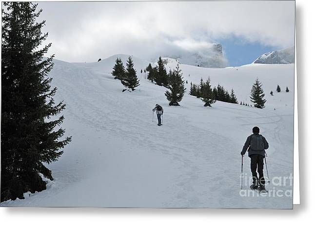45-49 Years Greeting Cards - Two people snowshoeing Greeting Card by Sami Sarkis