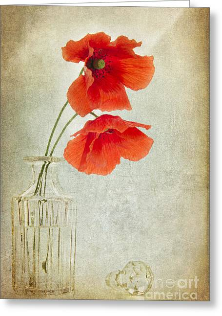 Glass Vase Greeting Cards - Two Poppies in a Glass Vase Greeting Card by Ann Garrett
