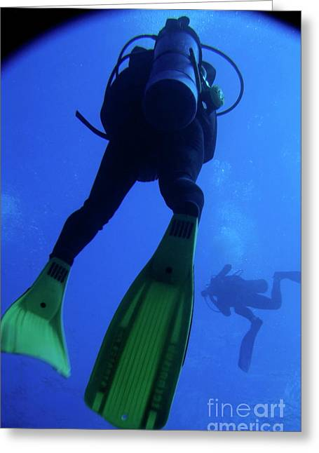 Scuba Diving Greeting Cards - Two scuba divers swimming Greeting Card by Sami Sarkis