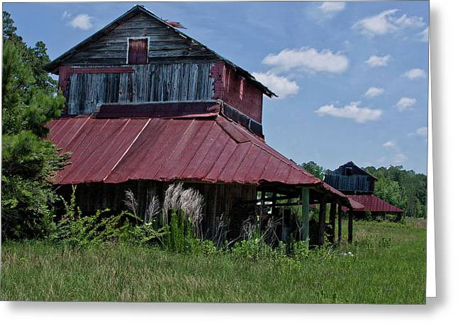 Best Sellers -  - Tin Roof Greeting Cards - Two Tobacco Barns Greeting Card by Sandra Anderson