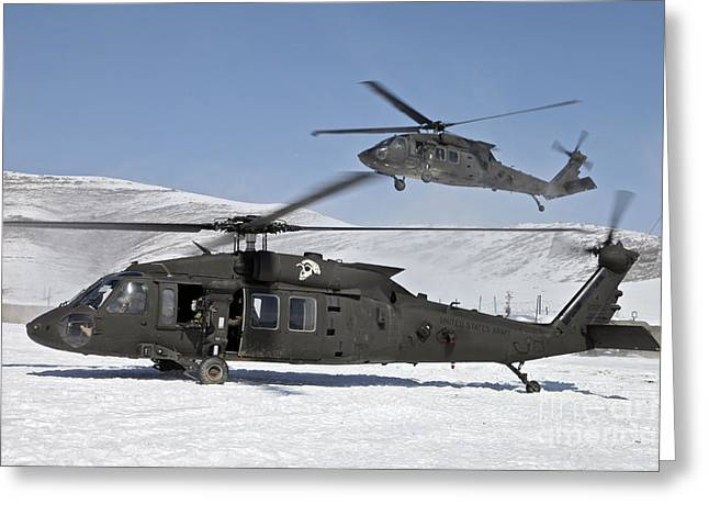 Sikorsky Photographs Greeting Cards - Two U.s. Army Uh-60 Black Hawk Greeting Card by Stocktrek Images