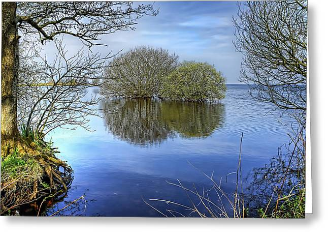 Lakes Pyrography Greeting Cards - Two Watery Trees  Greeting Card by Kim Shatwell-Irishphotographer