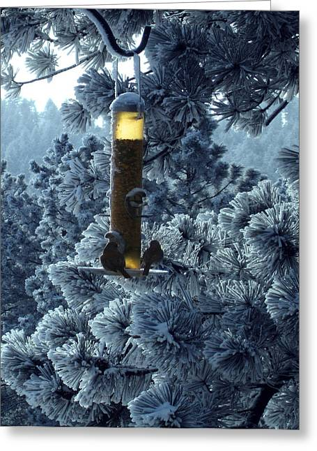 Luminist Greeting Cards - Two Winter Birds Greeting Card by Ric Soulen