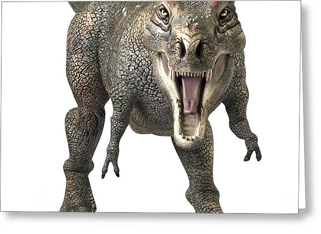 Tyrannosaurus Rex  Greeting Card by Roger Hall and Photo Researchers