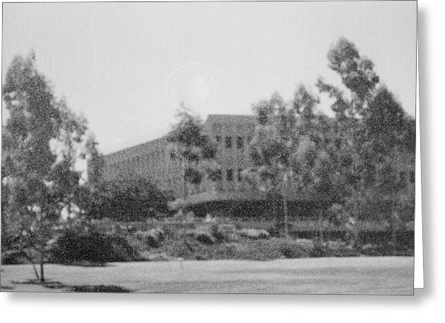 Uci Greeting Cards - UC Irvine Campus Greeting Card by Mark Greenberg