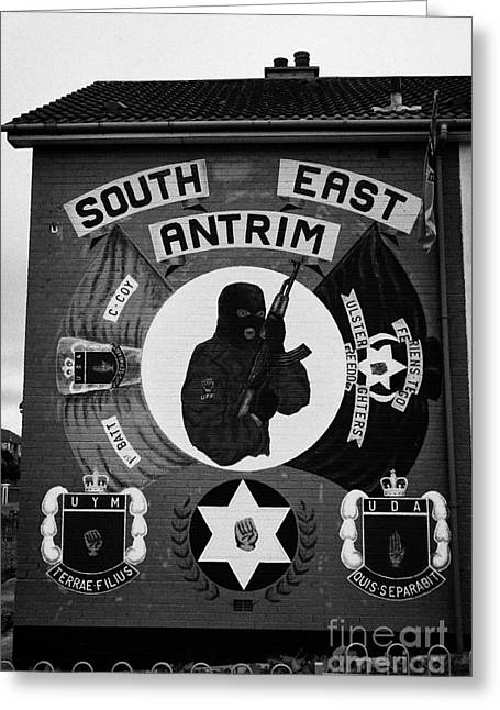 Loyalist Greeting Cards - UDA UFF loyalist terrorist wall mural monkstown county antrim  Greeting Card by Joe Fox