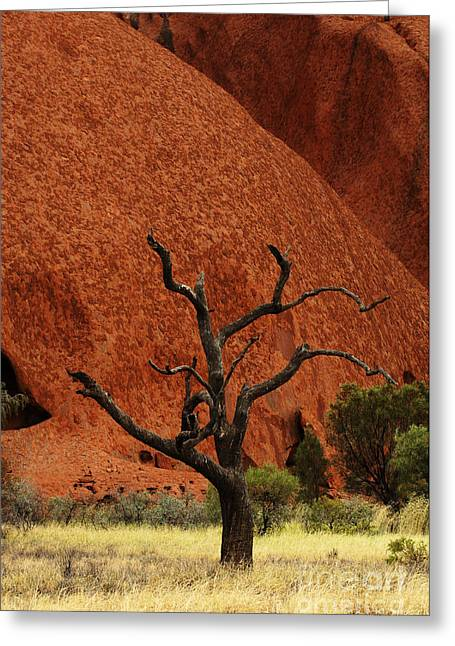 Ayers Rock Greeting Cards - Uluru Australia 9 Greeting Card by Bob Christopher