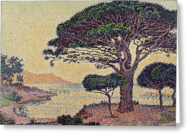Pointillist Greeting Cards - Umbrella Pines at Caroubiers Greeting Card by Paul Signac