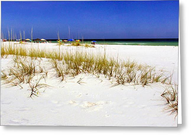 Umbrellas On The Beach Greeting Card by Judi Bagwell