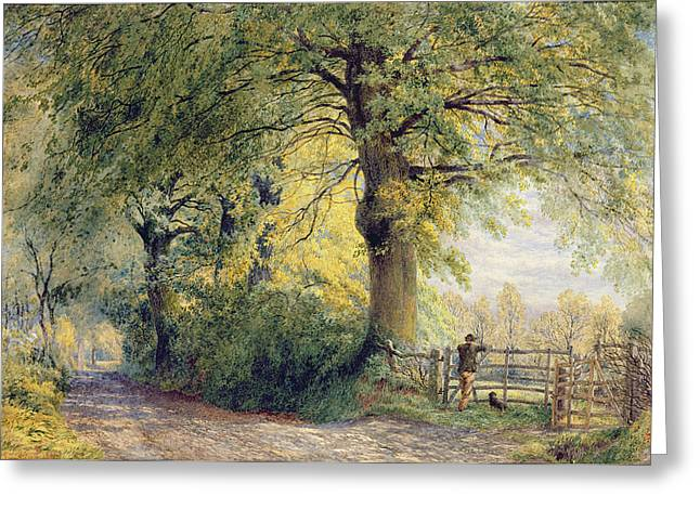 Dog Walking Paintings Greeting Cards - Under the Beeches Greeting Card by John Steeple
