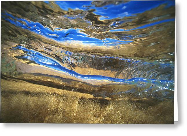 Vince Greeting Cards - Underwater Abstract Greeting Card by Vince Cavataio - Printscapes