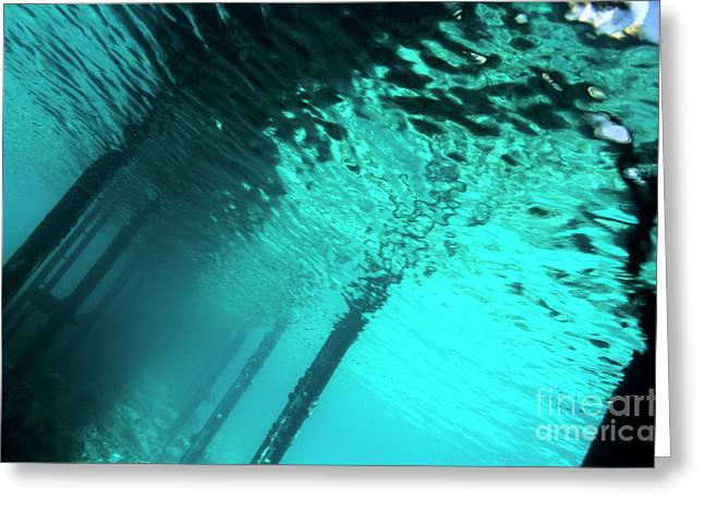 Undersea Photography Greeting Cards - Underwater view of a Pontoon Greeting Card by Sami Sarkis