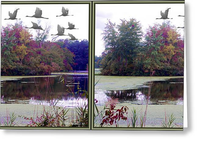 Alga Greeting Cards - Unicorn Lake - Cross your eyes and focus on the middle image Greeting Card by Brian Wallace