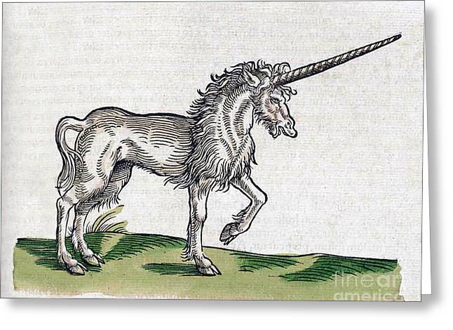 Chastity Greeting Cards - Unicorn Greeting Card by Science Source