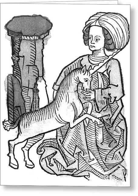 Chastity Greeting Cards - Unicornus Varius, 1491 Greeting Card by Photo Researchers
