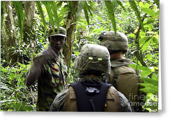 Jungle Warfare Greeting Cards - United States Marines Communicate Greeting Card by Stocktrek Images