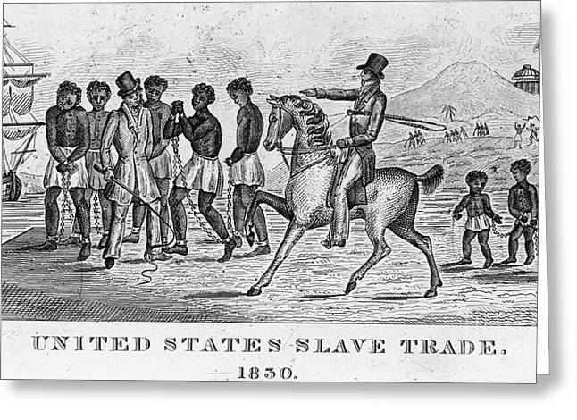 United States Slave Trade Greeting Card by Photo Researchers