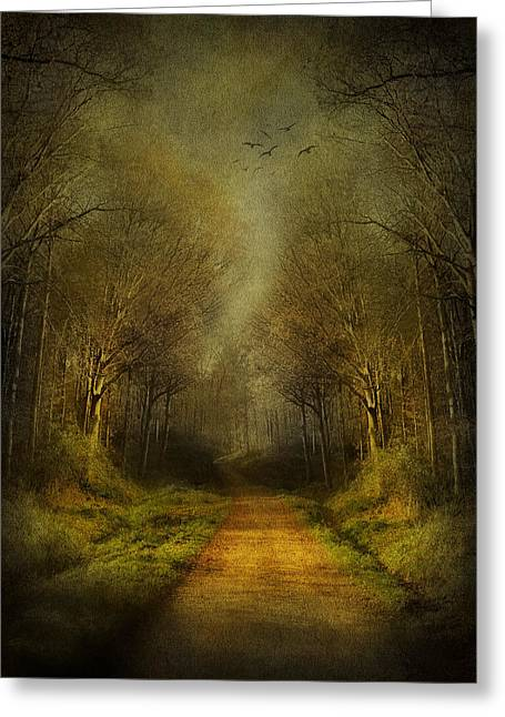 Painted Wood Greeting Cards - Unknown Footpath Greeting Card by Svetlana Sewell