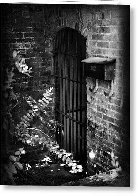 Dungeons Greeting Cards - Untitled I Greeting Card by Kelly Hazel