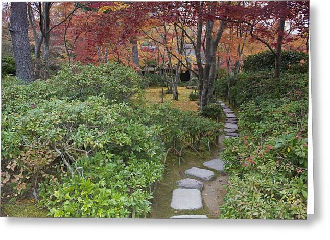 Kyoto Greeting Cards - Untitled Greeting Card by Rob Tilley